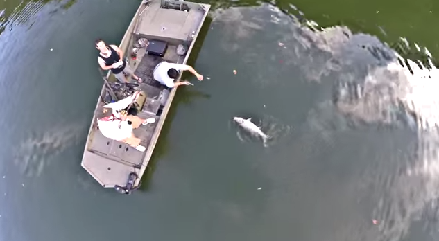 Beautiful Drone Footage of some Incredible Bass Fishing