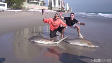 Dude Perfect Have a Shark Fishing Battle On the Beach