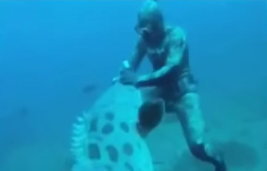 Giant Goliath Grouper Attacks Diver While Spearfishing