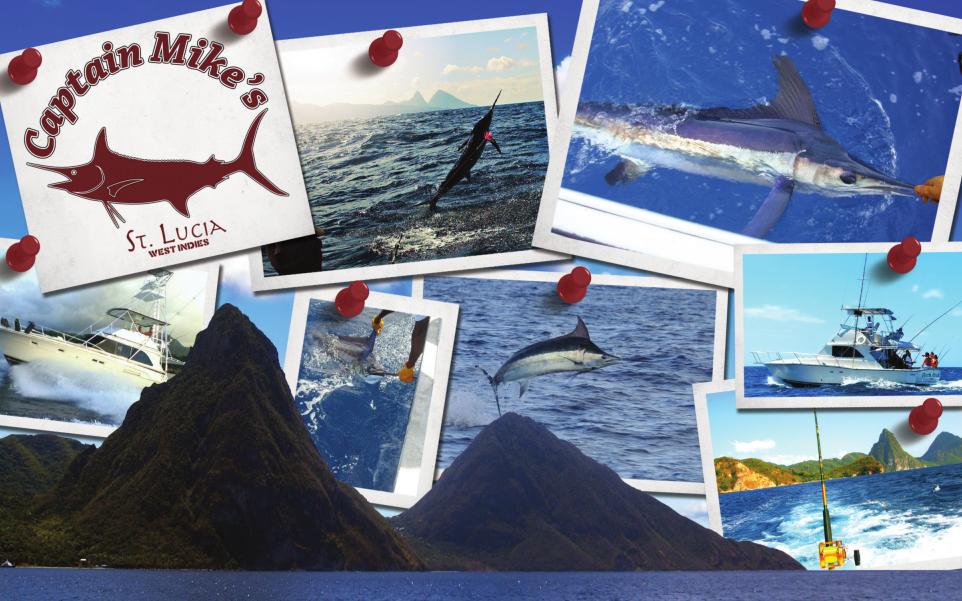 Red Tuna Fishing Shirt Club - November Captain Mikes Sport Fishing St Lucia